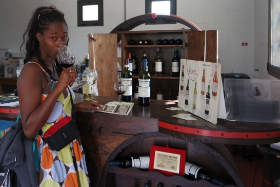 Wine tasting at Doccia al Poggio in Vinci