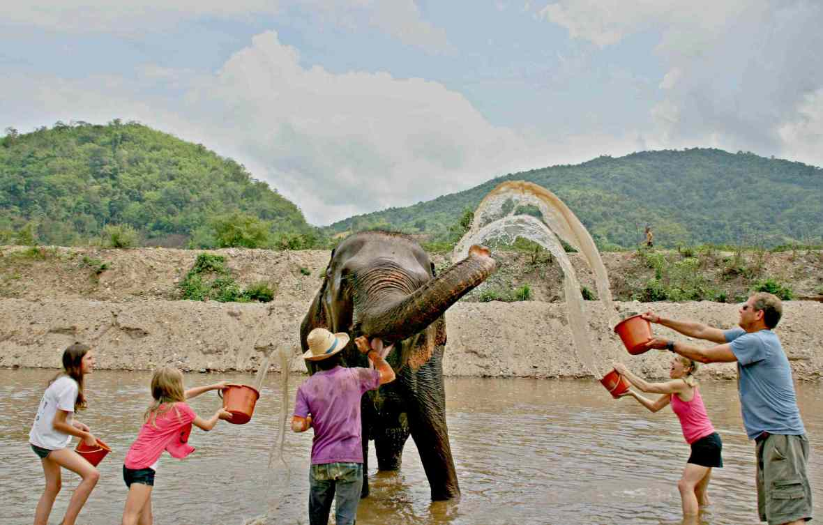 chiang mai elephant sancturyd_o