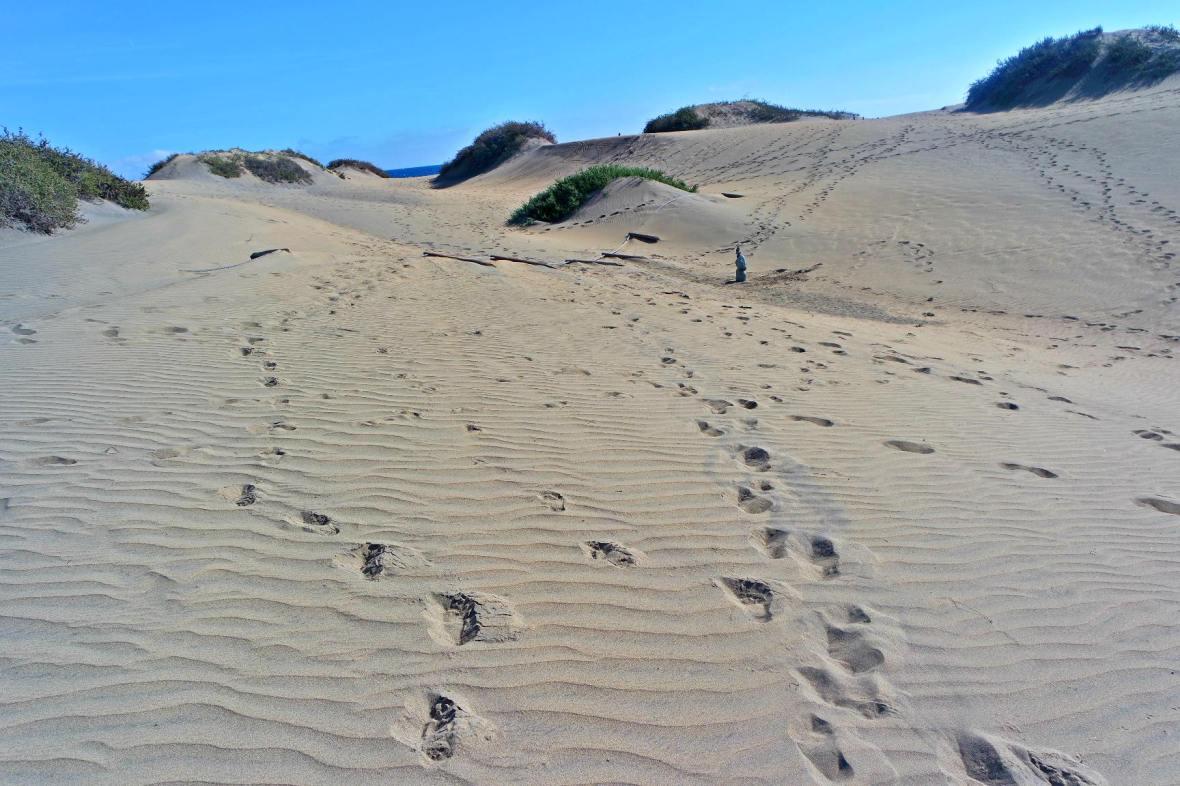 dunes footprints