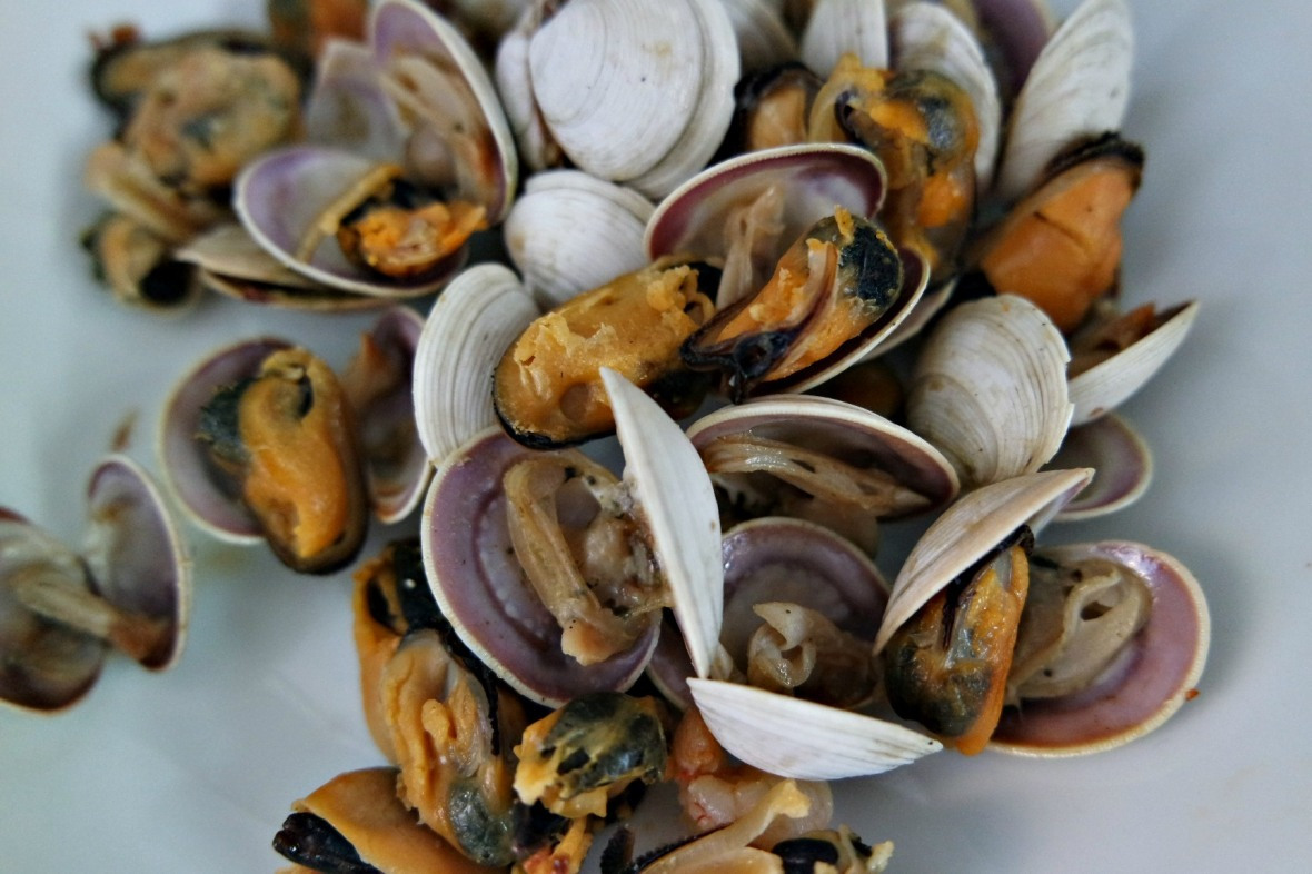 GC cockles and mussels